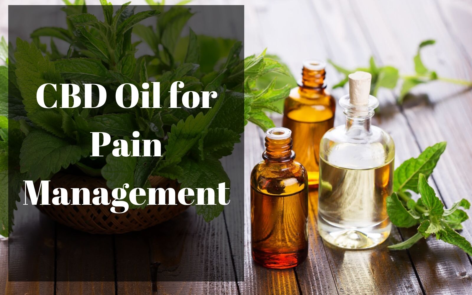Some Known Details About Cbd For Arthritis Pain: What You Should Know ,Examine This Report on Buy Cbd Oil: Best Cbd Oil Companies To Try In 2020 – The …